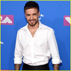 Liam Payne Looks So Handsome at MTV VMAs 2018