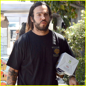 Pete Wentz Loads Up on Groceries at Farmer's Market
