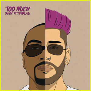 Zayn Malik: 'Too Much' feat. Timbaland - Stream, Lyrics & Download!