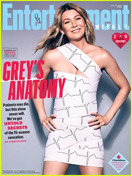 'Grey's Anatomy' Cast Celebrates 15 Seasons!