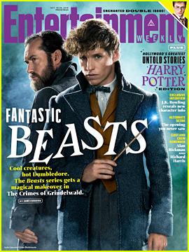 Eddie Redmayne Teases 'Fantastic Beasts' Ending: 'My Jaw Dropped'