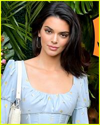 Kendall Jenner Gets a New Restraining Order Against Her Alleged Stalker