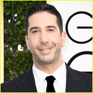 David Schwimmer Lookalike Caught & Arrested, Police Thank the 'Friends' Star!