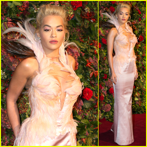Rita Ora Looks Fabulous in Feathers at Evening Standard Theatre Awards 2018!