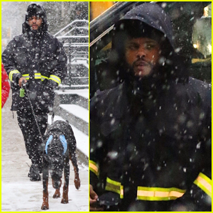 The Weeknd Braves NYC Blizzard to Take His Dog for a Walk!