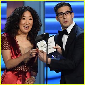 Sandra Oh & Andy Samberg Named Hosts of Golden Globes 2019!