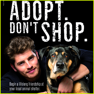 Gregg Sulkin Cuddles Up With a Pup in Pro-Pet Adoption PETA Ad!