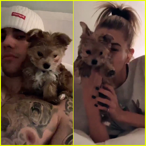 Justin & Hailey Bieber Adopt Adorable Puppy for Christmas!