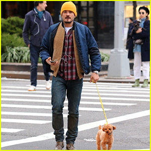Orlando Bloom Takes His Dog Mighty Out for a Shopping Trip!