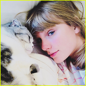 Taylor Swift & Her Cat Meredith Wish Fans a 'Purry Christmas'