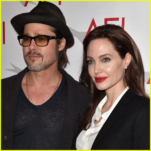 Angelina Jolie & Brad Pitt Reaffirm Their 'Shared Commitment' to Their Winemaking Business