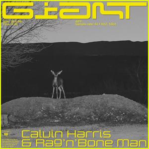 Calvin Harris: 'Giant' Stream, Lyrics, & Download - Listen Here!