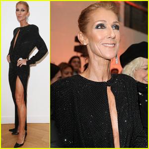 Celine Dion Shows Lots of Leg at Alexandre Vauthier Show!