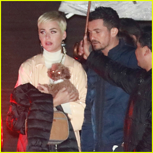 Katy Perry Orlando Blooms Dogs Join Them For Date Night