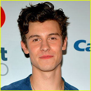Shawn Mendes Apologizes After Accidentally 'Liking' Offensive Tweet