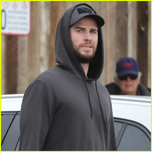 Liam Hemsworth Grabs Groceries in Malibu