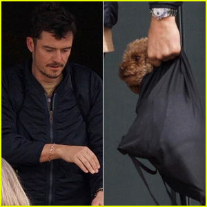 Orlando Bloom Brings Dog Mighty to Lunch with Him!