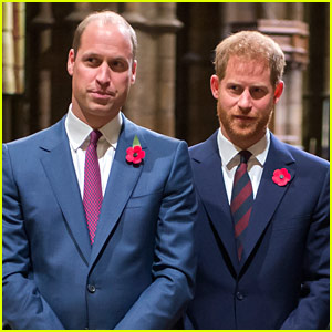 Is There a Royal Feud Between Prince William & Prince Harry?