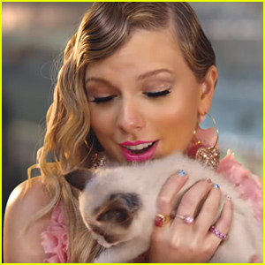 Is This Taylor Swift's Big Secret in Her 'Me!' Music Video?