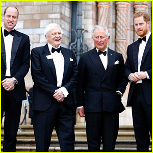 Princes William & Harry Attend 'Our Planet' Gala Premiere in U.K.