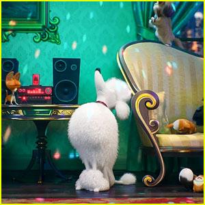 'The Secret Life of Pets 2' Releases Trailer - Watch Now!