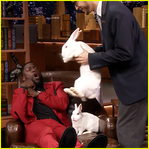 Kevin Hart Hilariously Freaks Out Over Rabbits on 'Jimmy Fallon's Hop Quiz Game - Watch Here!