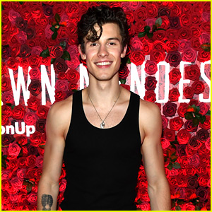 Shawn Mendes Bares Muscles in a Tank Top at Special Show