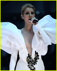 Celine Dion Pauses Final Vegas Show Because of a Fan - Find Out Why!