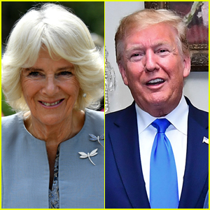 Duchess Camilla Goes Viral for Winking Behind Donald Trump's Back