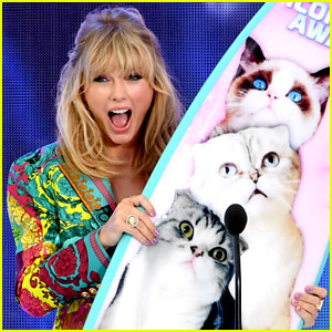 'Cats' Movie Finds a Funny Taylor Swift Easter Egg