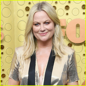 Amy Poehler's Thriller 'The Mother-in-Law' Picked Up By NBC