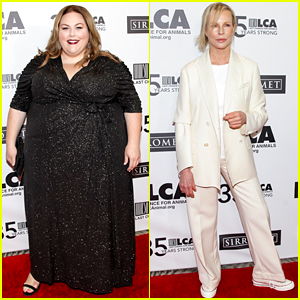 Chrissy Metz & More Stars Support Kim Basinger at Last Chance for Animals Gala