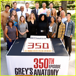 'Grey's Anatomy' Cast Celebrates Taping the 350th Episode!