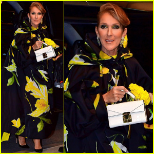 Celine Dion Shows Her Style During Stop in New York City