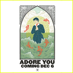 Harry Styles Announces Song 'Adore You,' Drops Video Teaser!