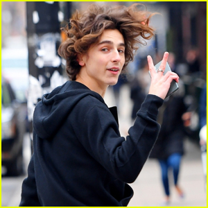 Timothee Chalamet Enjoys Day Out in NYC!