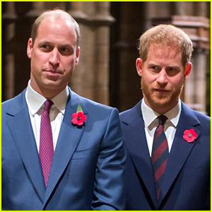 Prince Harry & Prince William Issue Rare Joint Statement Over Rumors About Their Relationship