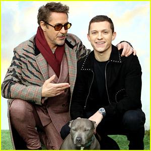 Robert Downey Jr. & Tom Holland Reunite at 'Dolittle' London Premiere!