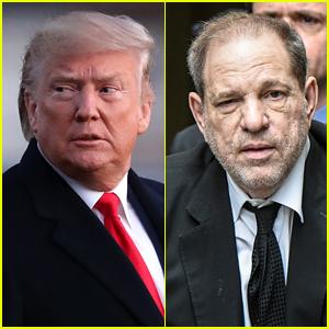 Donald Trump Comments on Harvey Weinstein's Guilty Verdict