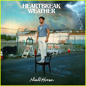 Niall Horan Announces Album 'Heartbreak Weather,' Reveals Artwork!