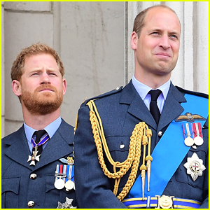 Prince Harry & Prince William 'Didn't Leave on Good Terms,' Family Friend Says