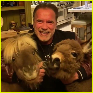 Arnold Schwarzenegger Practices Social-Distancing with Tiny Horse & Donkey During Coronavirus Pandemic - Watch!