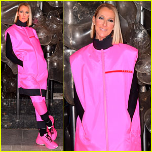 Celine Dion Wears a Pink Prada Outfit After Final Brooklyn Show