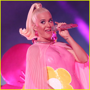 Katy Perry Reveals to Fans If She Wants a Boy or a Girl