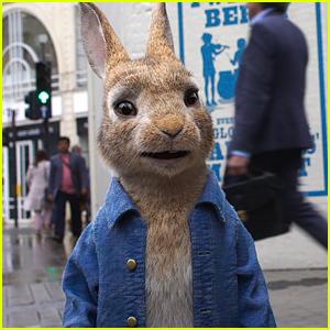 'Peter Rabbit 2' Release Date Delayed Months Due to Coronavirus