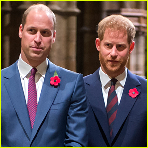 Prince Harry & Prince William's Relationship Won't Repair to Where It Once Was (Report)