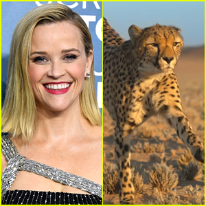 Reese Witherspoon Narrates Quibi's 'Fierce Queens' Series