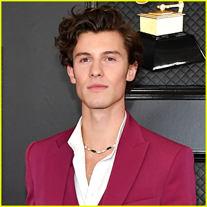 Shawn Mendes Donates $175,000 To SickKids Foundation For Coronavirus Preparedness