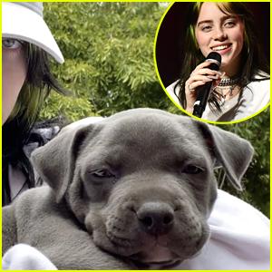 Billie Eilish Is a 'Foster Fail' As She Adopts Puppy During Quarantine