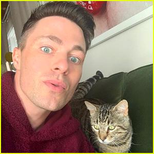 Colton Haynes Adopts Cat, Names Him in Honor of Timothee Chalamet